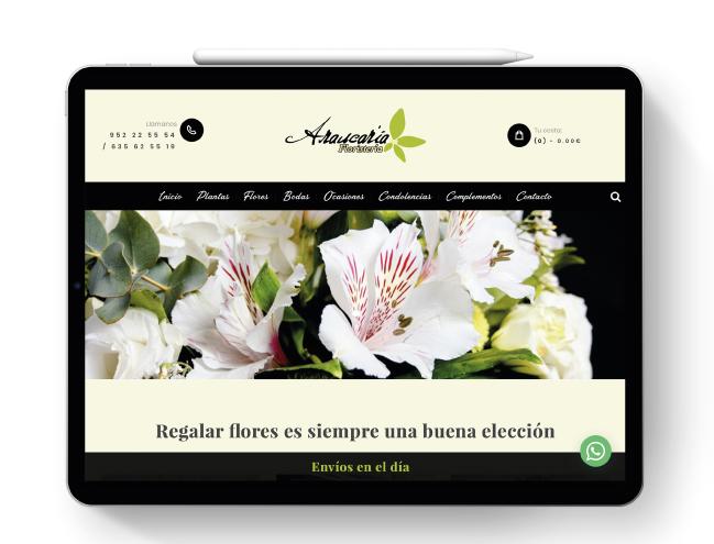Pagina web Araucaria